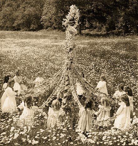 may-pole-daisies-600kb