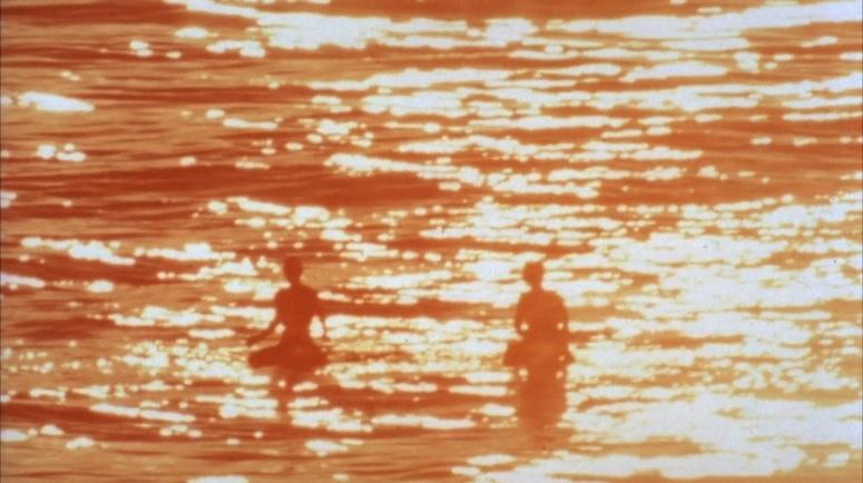 BROWN_1964_Endless_Sumer_surfers_floating.jpg